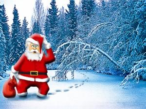 jouluvanametsas